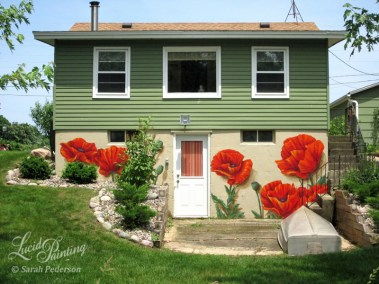 Photo showing orange poppies that are about three feet in diameter on a cottage foundation.
