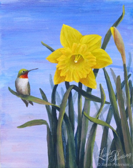 A yellow daffodil in full bloom and another bud are painted with a blue background. A ruby-throated hummingbird sides on one of the leaves.