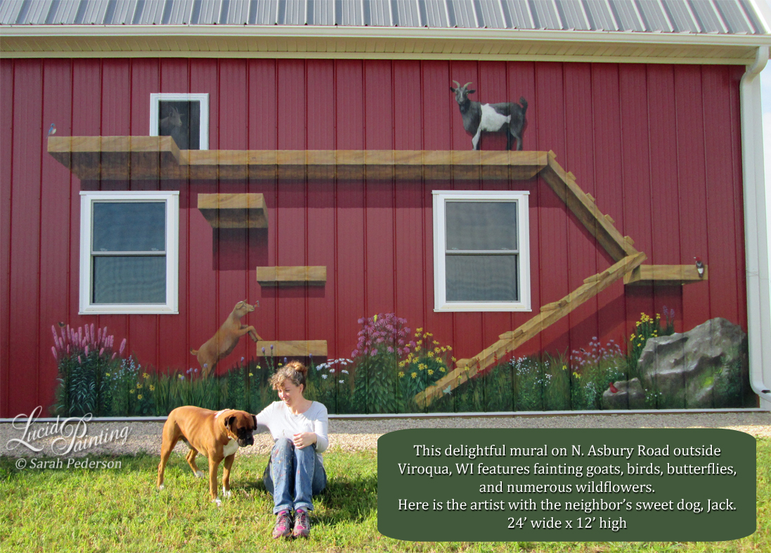 Whimsical mural using perspective and shadows to show a series of ramps and ledges that fainting goats can climb on the side of a barn in Viroqua, Wisconsin. The mural features goats, butterflies, prairie flowers, red headed woodpecker, bluebird, goldfinch, and many more hidden surprises.