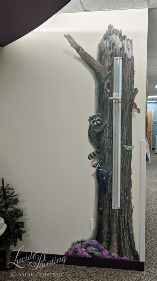 A large tree is painted on the wall where kids get their height checked at the doctor's office. A raccoon, pileated woodecker, squirrel, dragonfly, lightning bugs, luna moth and wood tick are all climbing on the tree! La Crosse, Wisconsin.