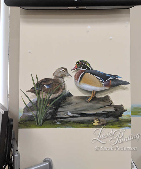 A male and female wood duck sit on a log and rock while a baby duckling floats in the water in front of them in this accent to the main mural.
