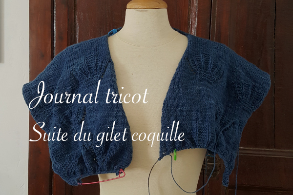 Journal tricot gilet coquille Emma Ducher en cours
