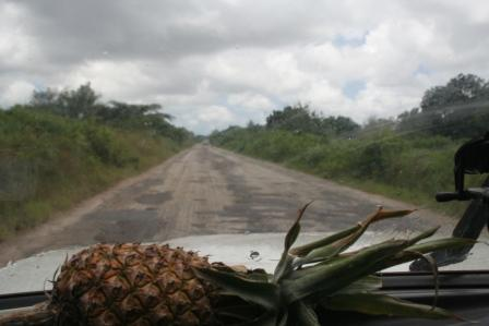 Still life with potholes and pineapple