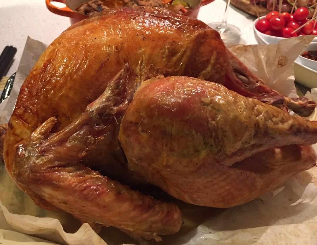 Luci's Thanksgiving Turkey