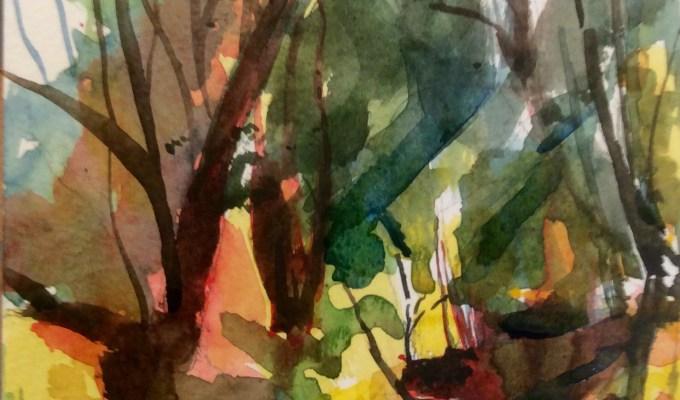 Woodland Light, November.