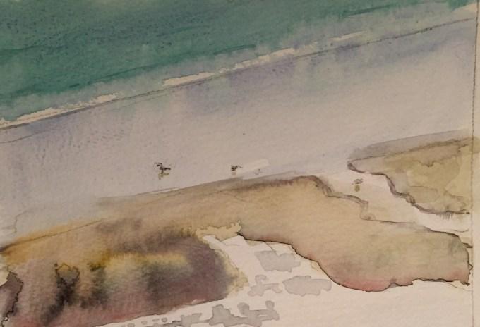 Gulls on Shore, Watercolour, 17 x 12 cm