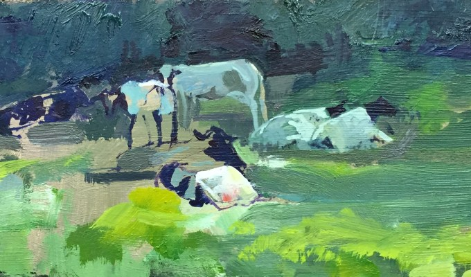 Cattle in Repose