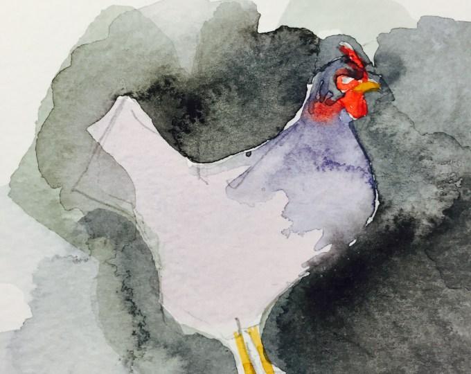 Hen, watercolour sketch