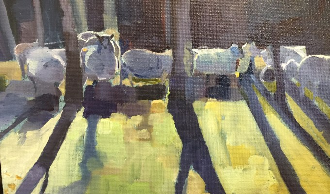 Sheep, January.