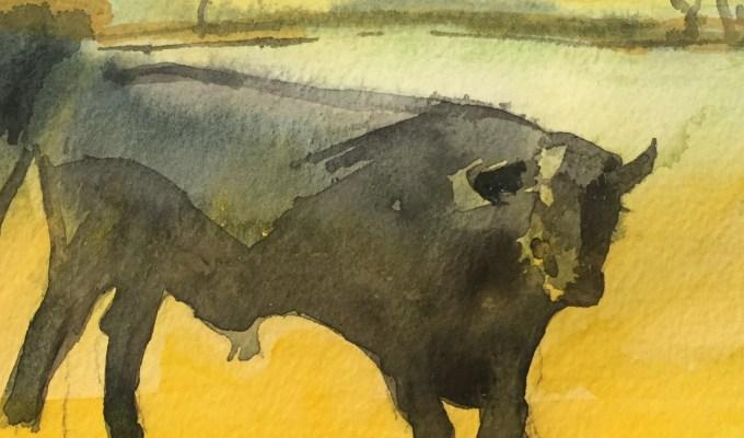Bull Spring II