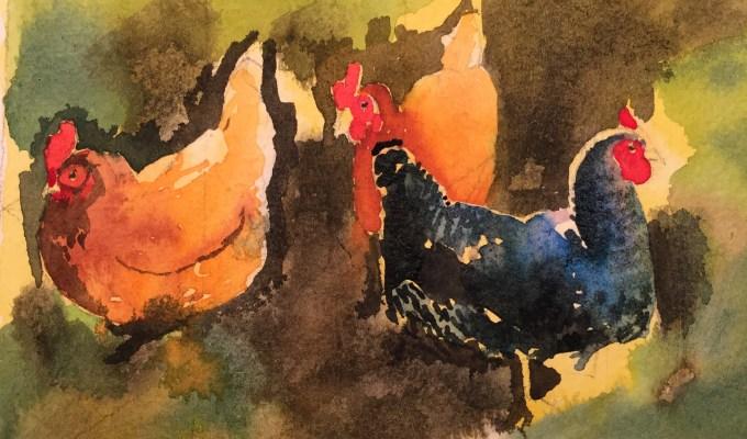 Hens, November Morning.
