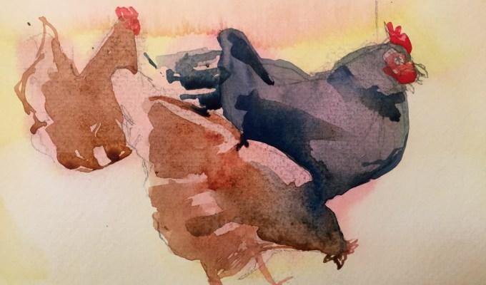 More Hens II