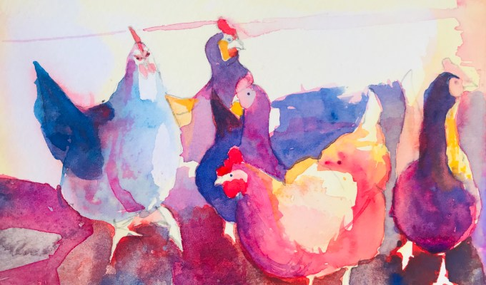 Hen Dance, continued.