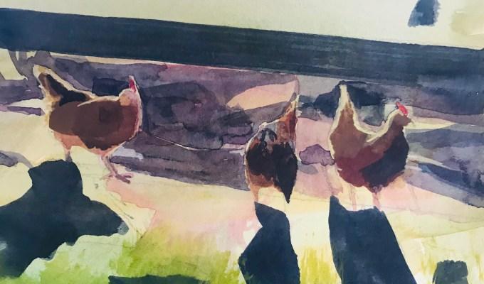 Morning Hens II