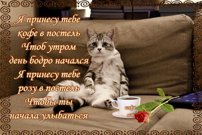 достоинства картинки в стихах просыпайся котик необходим