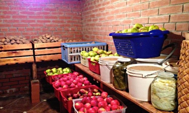 Зберігання яблук додати свою ціну в базу коментар. Правила зберігання яблук  в зимовий період