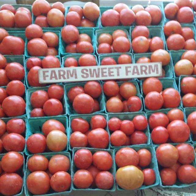 Fresh Pesticide Free Tomatoes