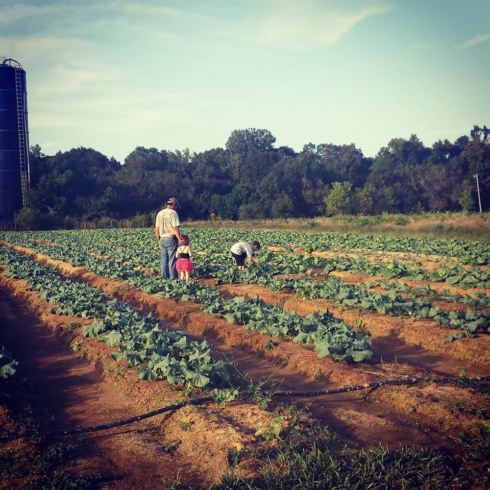 About Us - Luckett Farms CSA