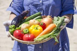 子供と大人のピーマン嫌いを克服させる料理レシピ!嫌いな野菜に喜ぶ
