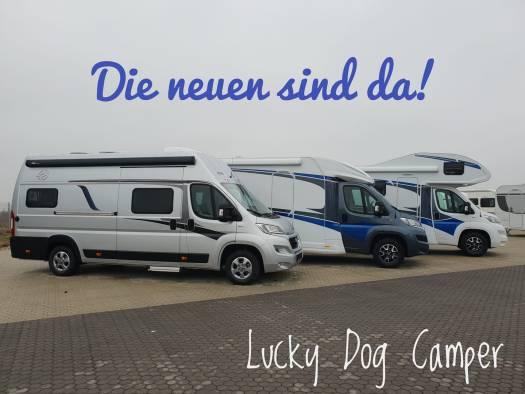 Lucky Dog Camper Flotte 2019