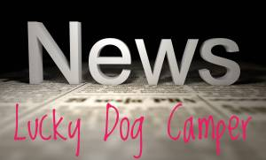 Lucky Dog Camper - NEWS