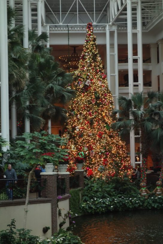Gaylord Opryland Hotel Christmas tree Nashville