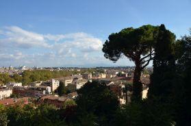 Roma (34)