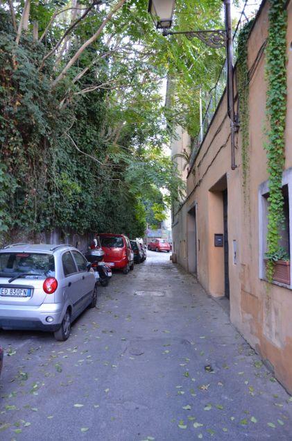 Roma (37)