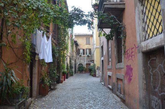 Roma (39)