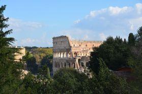 Roma (45)