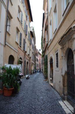 Roma (71)
