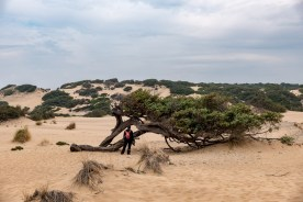 Sardinien Tag 9 (14)
