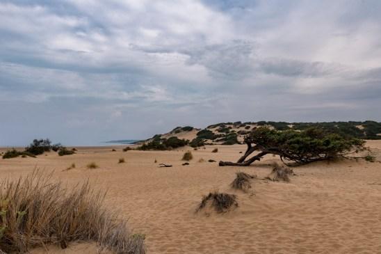 Sardinien Tag 9 (15)