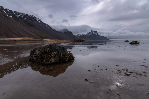 Island - Tag4 -03