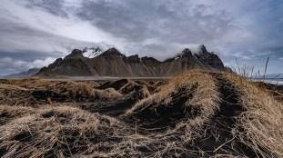 Island - Tag4 -11