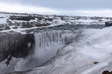 Island - Tag5-16