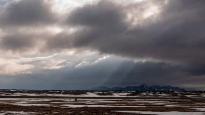 Island - Tag5-23