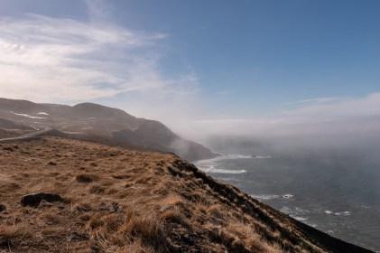 Island - Tag8 (20)
