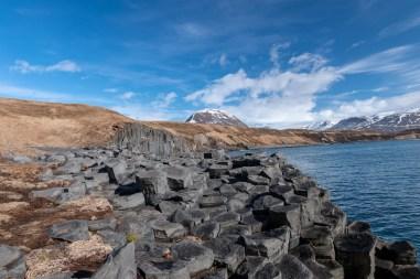 Island - Tag8 (29)