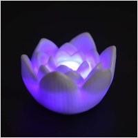 Color Changing LED Lotus Flower Romantic Love Mood Lamp ...