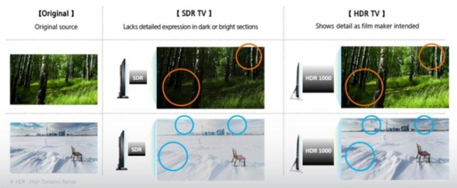 HDR1_TV_Main_2_1