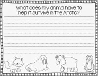 Arctic Animal Report | Lucky to Be in First | FREE!