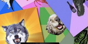lucloi.vn_Advice Animals