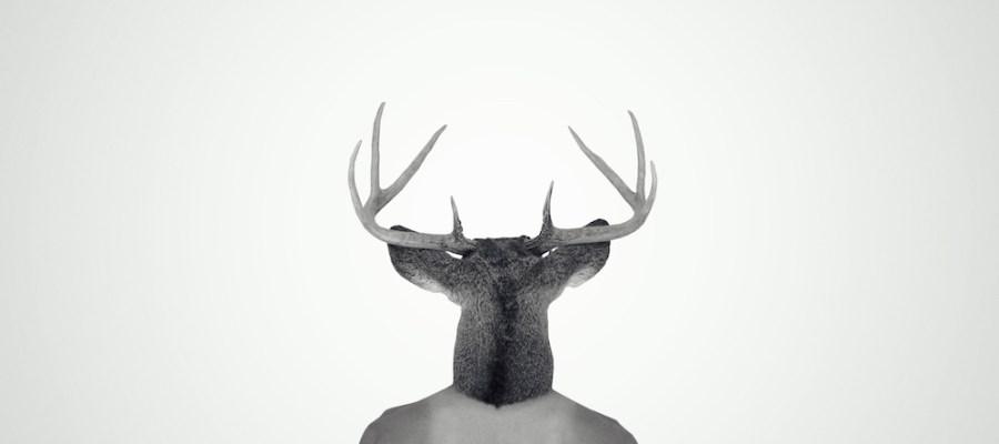 La camisole tatouée / Luc Pallegoix, 2013. Encre pigmentaire sur papier Moab blanc 300 gr. Disponible en grand format |50 x 50 cm 5 ex.| ou moyen format | 23 x 23 cm 10 ex. |. Trois autres numéros sont réservés pour des très grands formats.