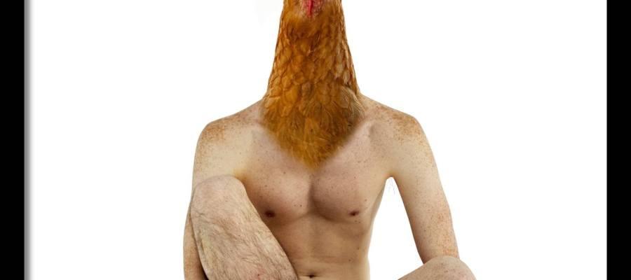 Le garçon poulet /Luc Pallegoix, 2020.
