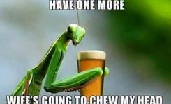 Stay And Have One More Beer Meme