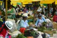 Gualaceo Markets