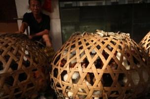Chicken seller, Gulang Yu, Fujian