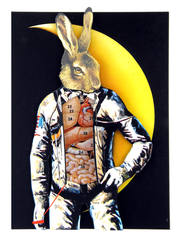 Space Rabbit