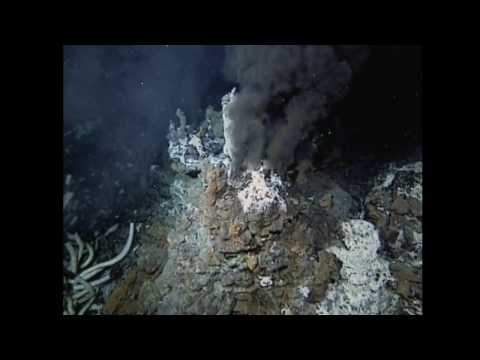 Deep sea creatures and volcanic vents… (3/5)
